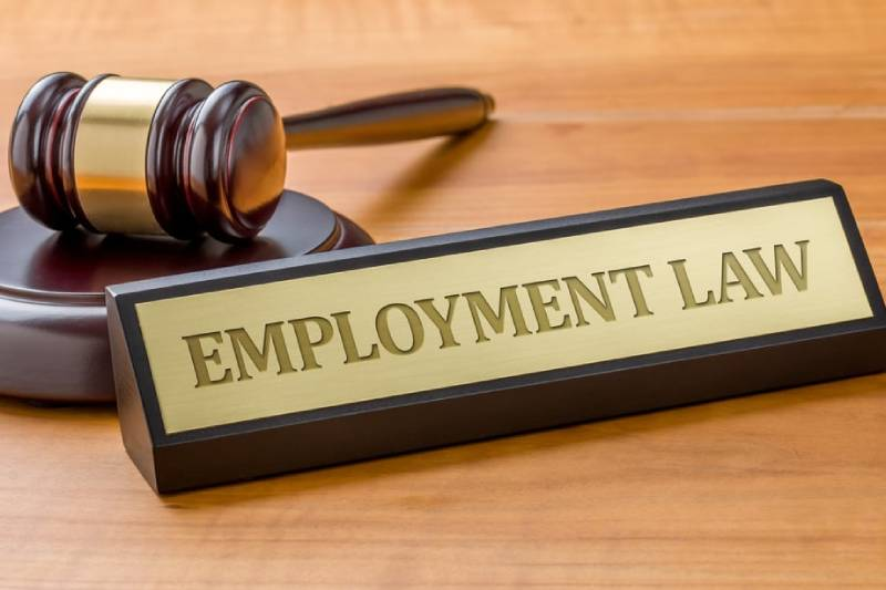 Employment Law Advice That Could Help Your Business